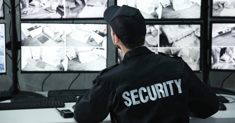 vigilanza non armata consiglio di stato